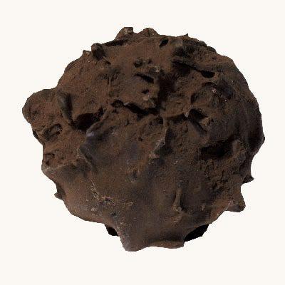 Lanýž hořká čokoláda